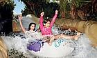 101 summer family activities
