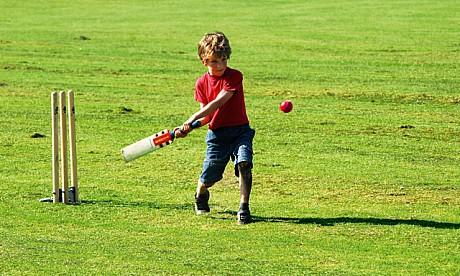 2015_1_cricket
