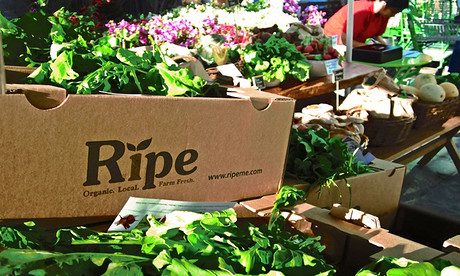 2016_ripe