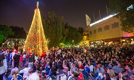 Christmas tree lighting at The Irish Village – pictures