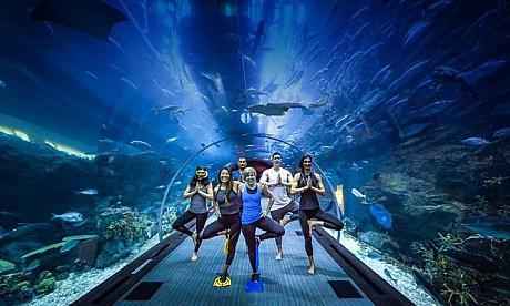under_water_yoga