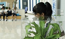 Students take part in plants anti-bullying campaign