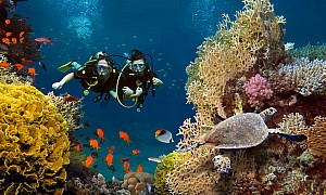 World's largest coral reef park coming to the UAE