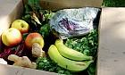 Go Organic in Dubai
