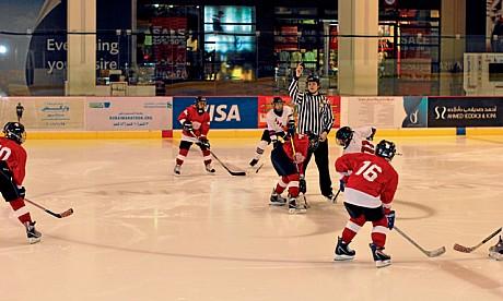 hockey300112_2