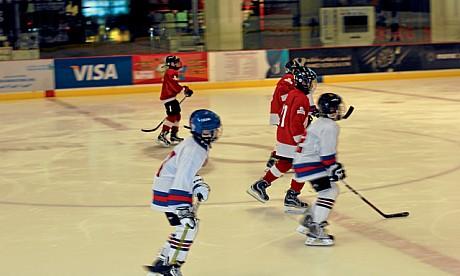 hockey300112_3