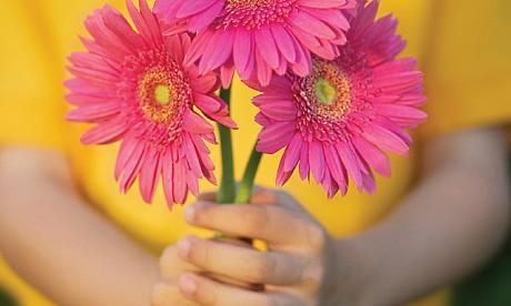 flower22810_1