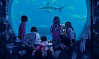 Family fun at Atlantis Dubai