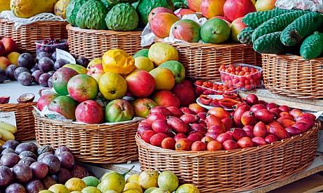 2014_fruit_1