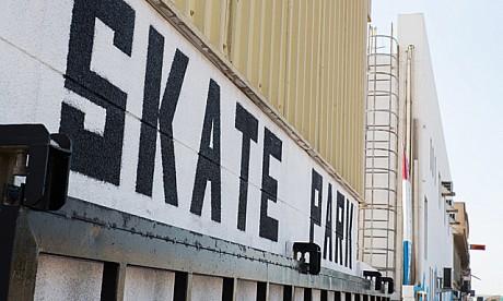 2014_skate_2