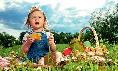 2012_picnic