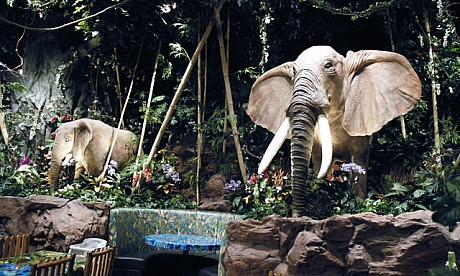 rainforestcafe_2