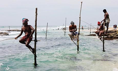 srilanka0131_1