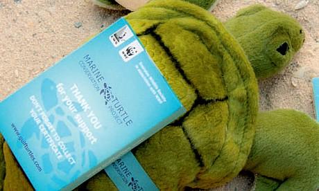 2012_turtle