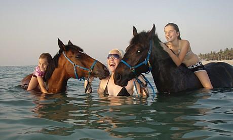 horse271009_1