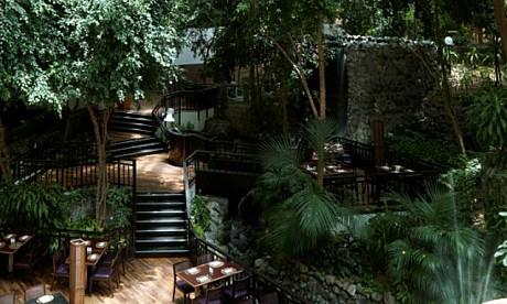 Café at the Falls image