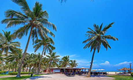 Dolphin Beach Restaurant image